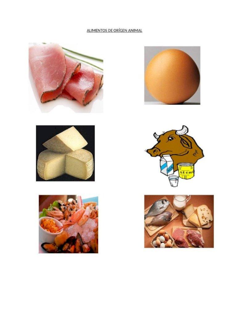 alimentos vegetal animal mineral